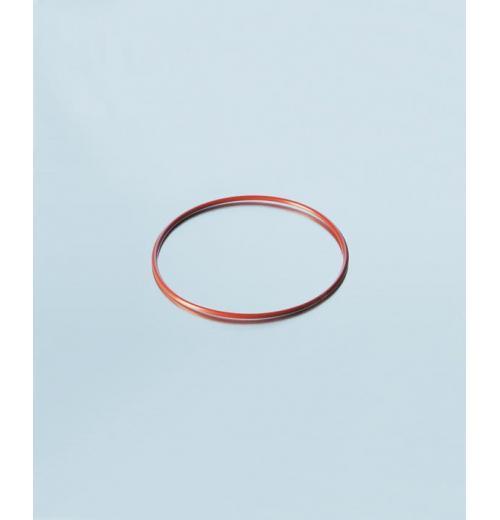 O-Ring Vermelho